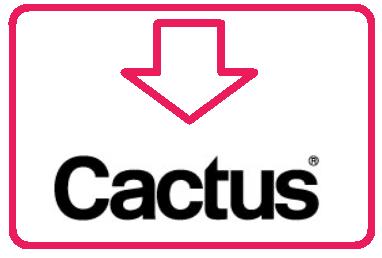 flash cactus
